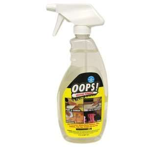 Homax Products 21Oz Oops Remover 710814 Paint & Varnish