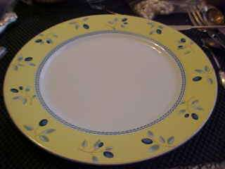 BLUEBERRY By Royal Doulton China Dinner Plate 10 1/4