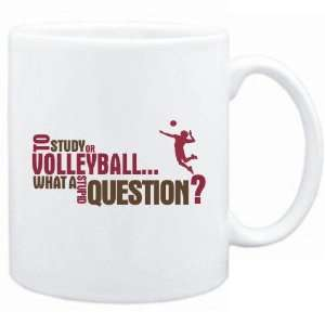 New  To Study Or Volleyball  What A Stupid Question