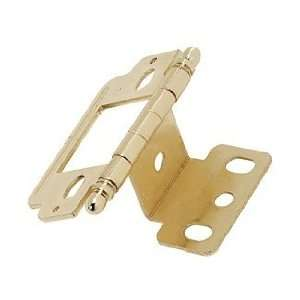 Amerock Functional Hinges Cabinet Hardware Polished Brass