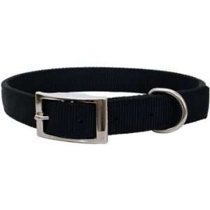 Black 2 Ply Nylon Buckle Collar   Medium