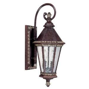 Capital Lighting Fixtures Ashbury Two Light Outdoor Wall Lantern With